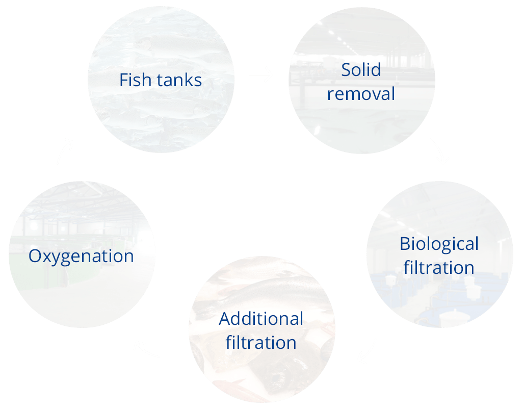 Hesy Aquaculture B V  - Fish farming systems